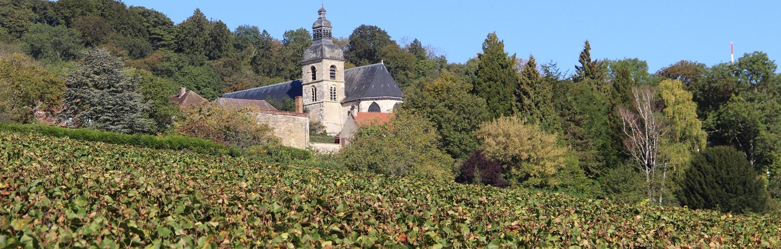 Tours 兰斯-香槟地区 - 一日游 - 从巴黎出发的一日游
